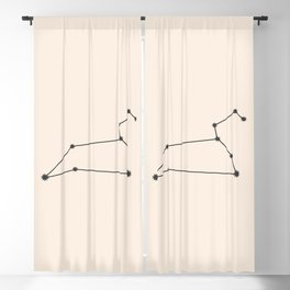 Leo Zodiac Constellation Charcoal Blackout Curtain