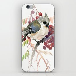 Cute Little Bird and Berries, Tufted Titmouse iPhone Skin