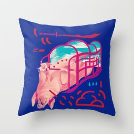 Crimson Sky Throw Pillow