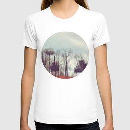 Fall Reflection T-shirt