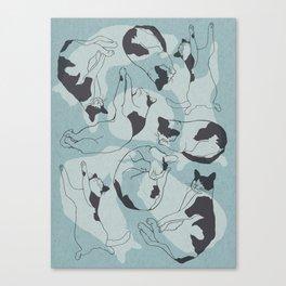 Sleeping Cats - Cool Canvas Print