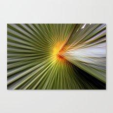 Palm leaf zoom Canvas Print
