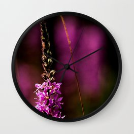 Purple flower of the loosestrife Wall Clock