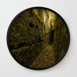 Nature's Secret Wall Clock