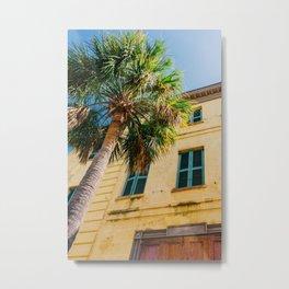 Charleston Palm Tree IV Metal Print