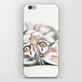 Cute Maine Coon Kitten Playing iPhone Skin
