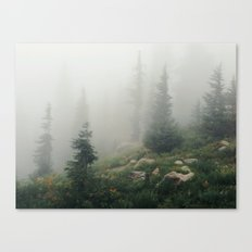 Mt Hood National Forest Canvas Print