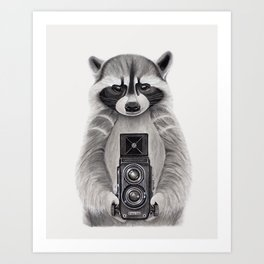 Raccoon Measuring Light / Mapache Midiendo la Luz Art Print