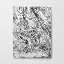 Banyan 1 Metal Print