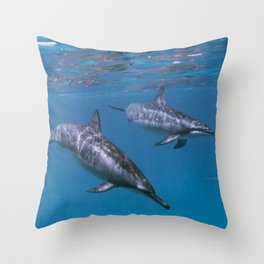 Dolphin swim by Throw Pillow