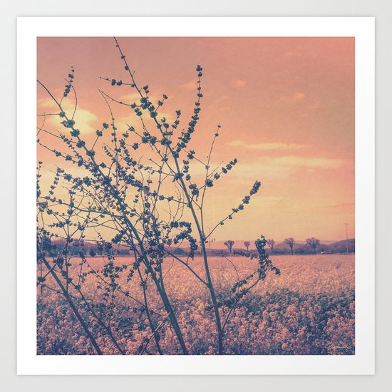 Imperfect Beauty (Beginning of Spring, California Countryside Farm) Art Print