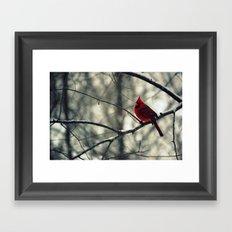 Winter friend 2. Framed Art Print
