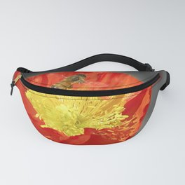 Remember Fanny Pack