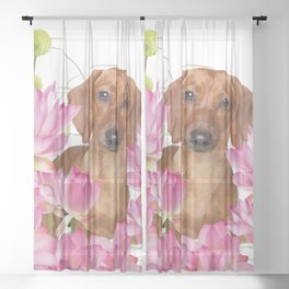 Dog in Field of Lotos Flower Sheer Curtain