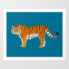 Panthera tigris tigris Art Print