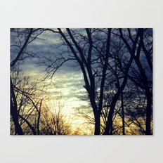 Naked Winter Canvas Print