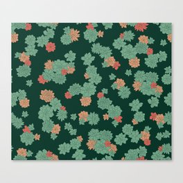 Succulents - Large Canvas Print