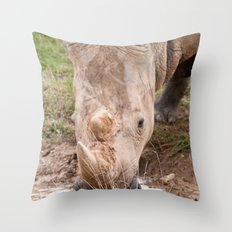 A refreshing drink Throw Pillow