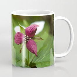 Red Trillium Flower Coffee Mug