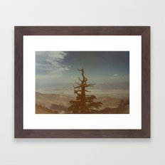 From Way Up Here Framed Art Print