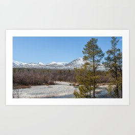 Forest in Norway Art Print