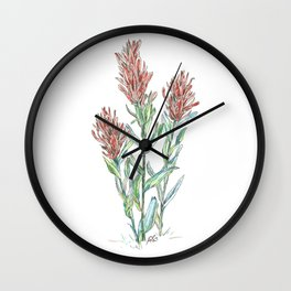 Indian paintbrush wild flowers Wall Clock