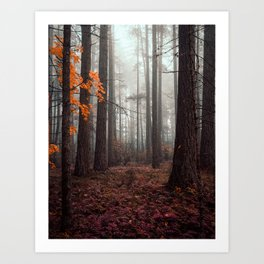 Within the Ominous Trees Art Print