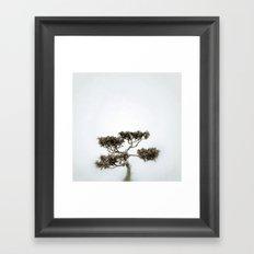 Tree #06 Framed Art Print