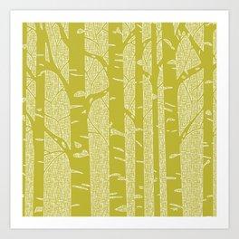 Green Birch Trees Art Print
