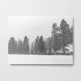 Snow Days // Snowy Tree Black and White Winter Landscape Photography Ski Snowboard Woods Wall Decor Metal Print