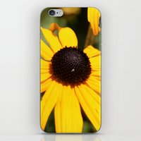 dentist iPhone & iPod Skins featuring Happy Flowers by IowaShots