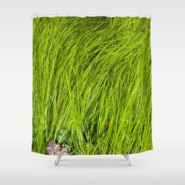 Verdure Shower Curtain