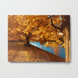 Perfect Autumn (Color) Metal Print
