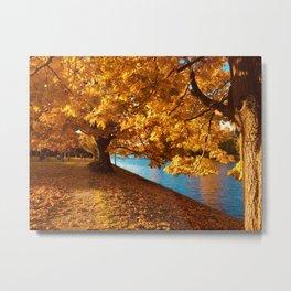 Perfect Autumn (Color) Metal Print