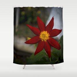 Dália Shower Curtain