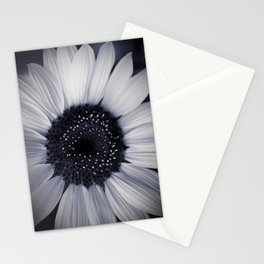 monocromatico Stationery Cards