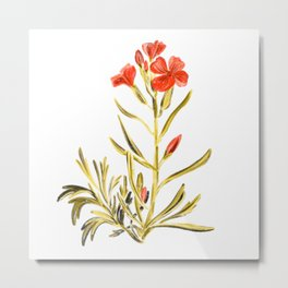 Spring red wild flower illustration // Hand drawn botanical florals // red and green Metal Print