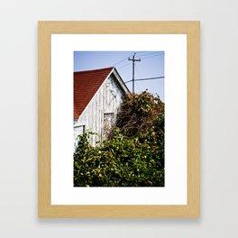 Orange Barn Framed Art Print