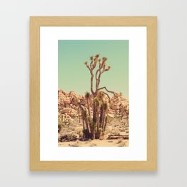 Joshua Tree#2  Framed Art Print