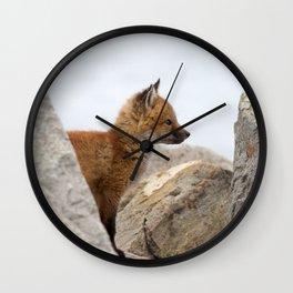 Watercolor Fox, Red Fox 41, Union Reservoir, Boulder Wall Clock