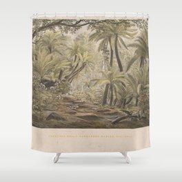 Ferntree Gully, Dandenong Ranges, Victoria by Eu von Guerard Date 1867  Romanticism Series Australia Shower Curtain