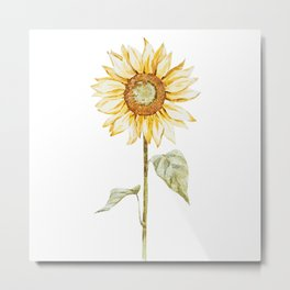 Sunflower 01 Metal Print