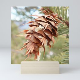 Watercolor Cone Douglas Fir 01, Rocky Mountain National Park, CO Mini Art Print