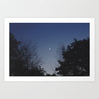 Crescent Lullaby Art Print