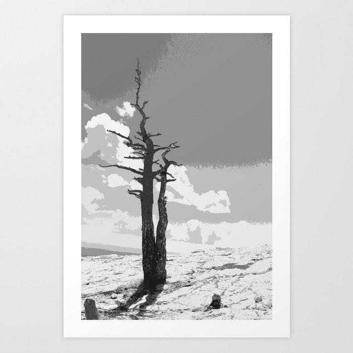 """Alone on Sandia"" Art Print"