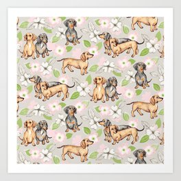 Dachshunds and dogwood blossoms Art Print