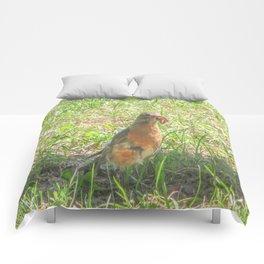 Bird and a Worm Comforters