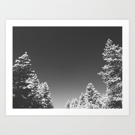 After the Snow Storm Art Print