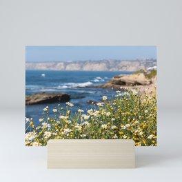San Diego, Beach, Coastal Photography, La Jolla Coastline, Travel California, Spring Flowers Mini Art Print