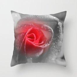 A Pinch of Pink Throw Pillow